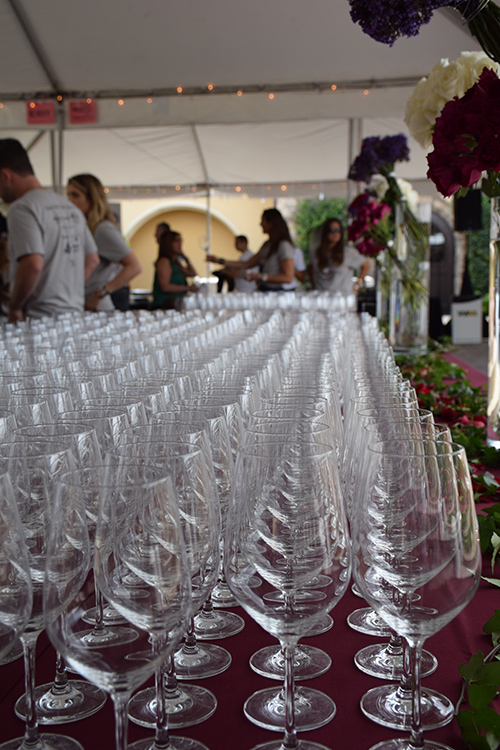 Table filled with rows of wine glasses