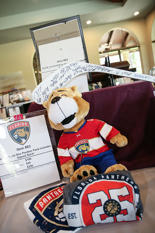 Items from Florida Panther's hockey team for auction